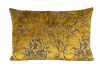 HOUSSE CASSIOPEE 13 60X40cm
